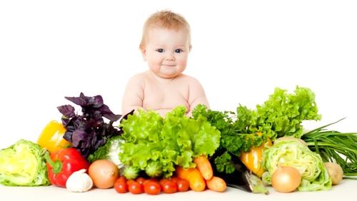 Makanan Sehat Bayi Usia   Tahun