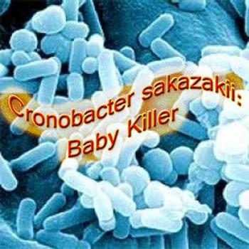 Bahaya Susu Formula Berbakteri